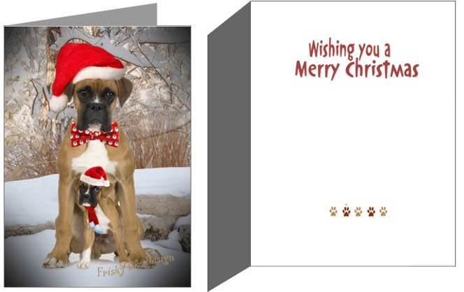 Boxers Dogbreedgifts Boxer Christmas Cards Ornaments